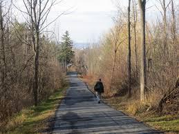 ithaca-woods